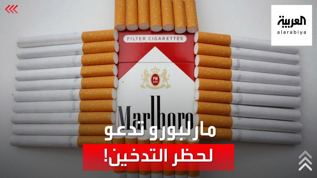 -صحوة متأخرة-.. صانع سجائر -مارلبورو- يدعو لحظر التدخين!  - نشر قبل 7 ساعة