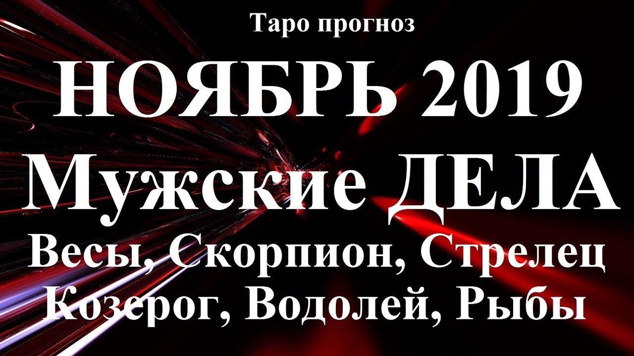 ДЕЛА МУЖСКИЕ – Весы, Скорпион, Стрелец, Козерог, Водолей,Рыбы. НОЯБРЬ 2019.
