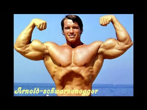 Best bodybuilder of all time arnold schwarzeneggers blueprint and best bodybuilder of all time arnold schwarzeneggers blueprint and lazer angelov pro athlete malvernweather Choice Image