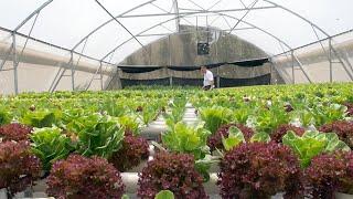 Farm to Table | AYANA Resort and Spa, BALI