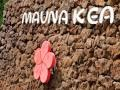 Hawaii Island--Mauna Kea Beach Hotel