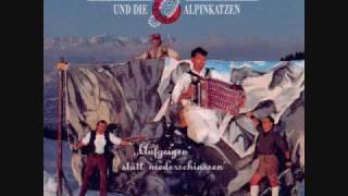 Hubert von Goisern - Goaßbeitl-Bauernbuam
