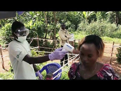 Doctors test possible ebola treatments in Democratic Republic of Congo