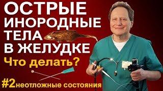 Что делать если кость не застряла в горле, острые инородные тела в желудке