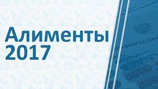 алименты в 2017 году по СК РФ: на ребенка, взыскание алиментов, размер выплат