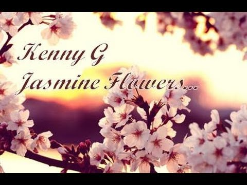 Kenny G - Jasmine Flower