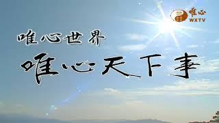 混元禪師法語11-20集【唯心天下事2581】| WXTV唯心電視台