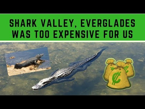 Shark Valley In Everglades Was Too Expensive For Us 💵