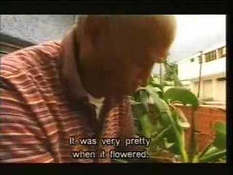 uncle poison in his garden