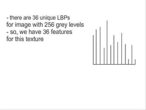 Texture classification using Local binary patterns