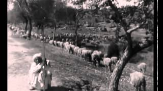 A Punjab Village ( Silent Documentry Movie)
