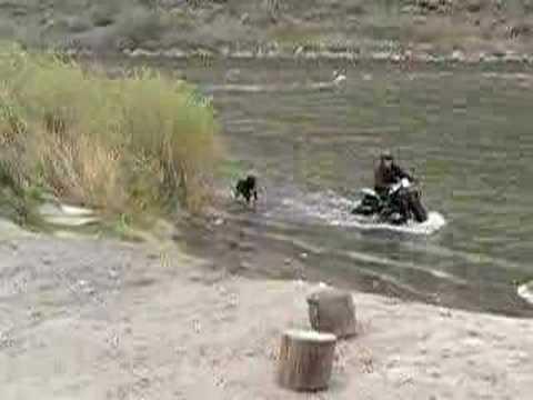 画像: ROKON IN THE WATER youtu.be