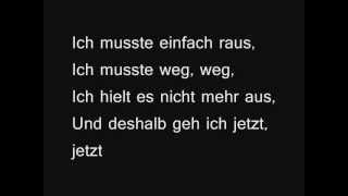 Panik - Lass Mich Fallen (+ lyrics)