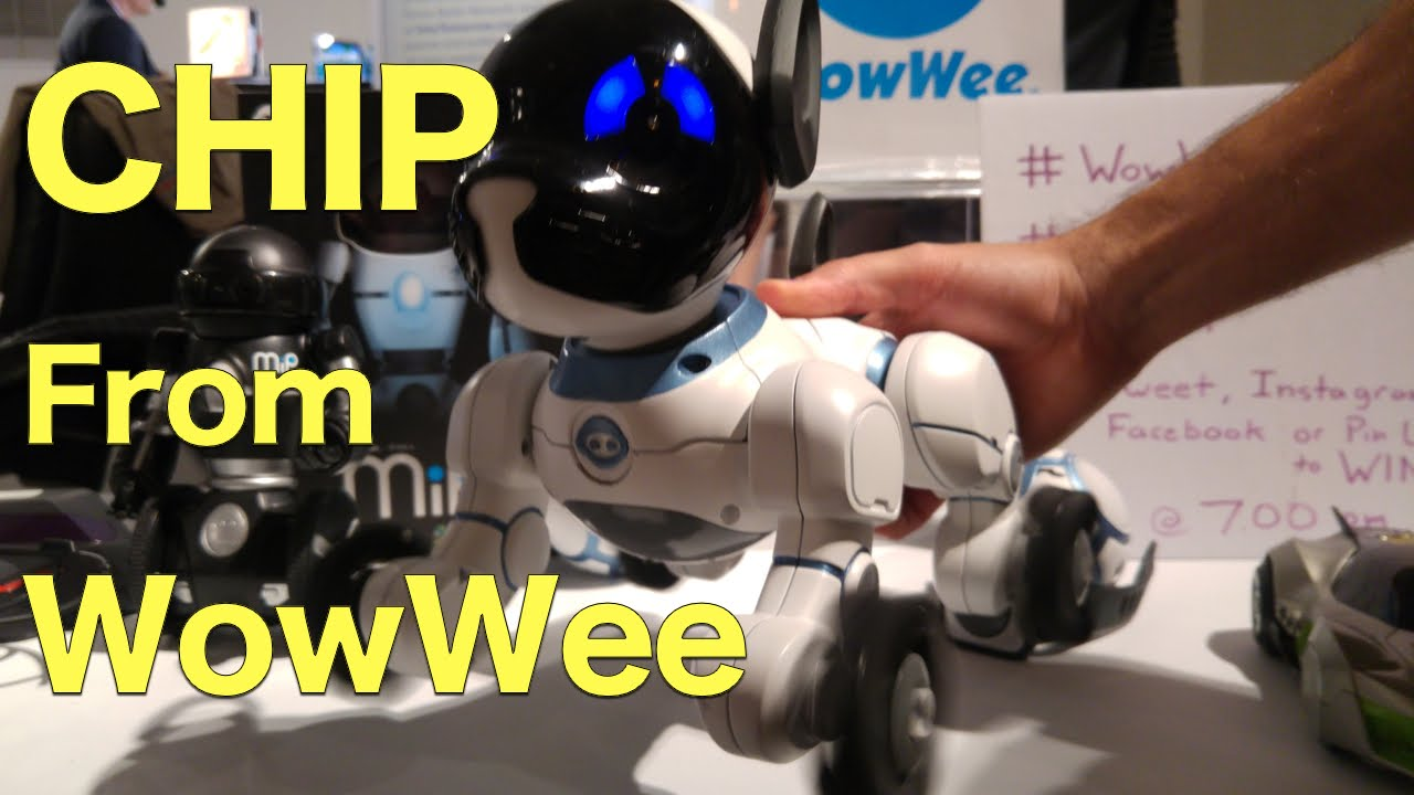 Chip Robotic Dog From Wowwee Early Preview This Is Something
