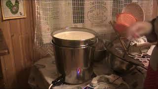 Самый простой и всеми любимый сыр Качотта в сыроварни!!!  Весь процесс!!!