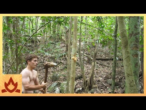Primitive Technology: Stone Adze