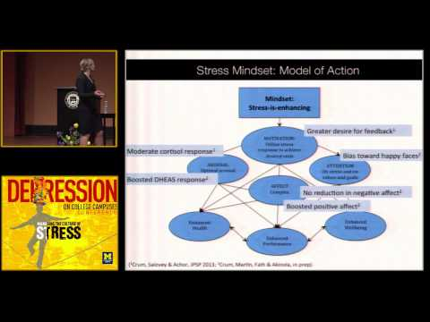 Rethinking Stress: The Role of Mindsets in Determining the S