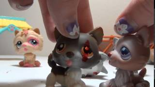 LPS: One Wolf One Pack part 3 (OLD)