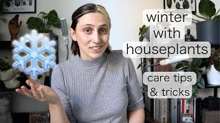 HOW TO KEEP YOUR PLANTS HAPPY OVER WINTER