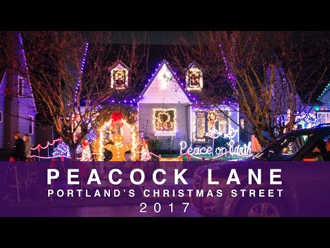PEACOCK LANE - PORTLAND OREGON - Christmas Lights 2017 [Sony a6000 + Zhiyun Crane Low Light]