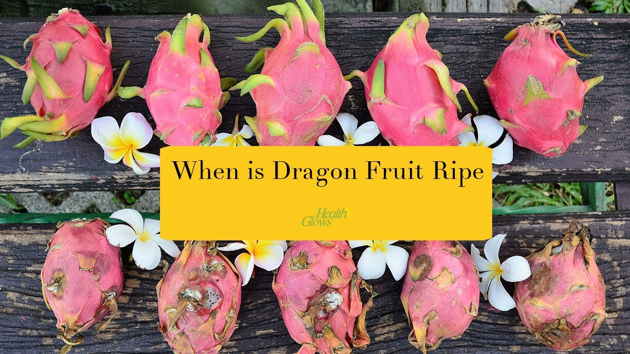 When Is Dragon Fruit Ripe