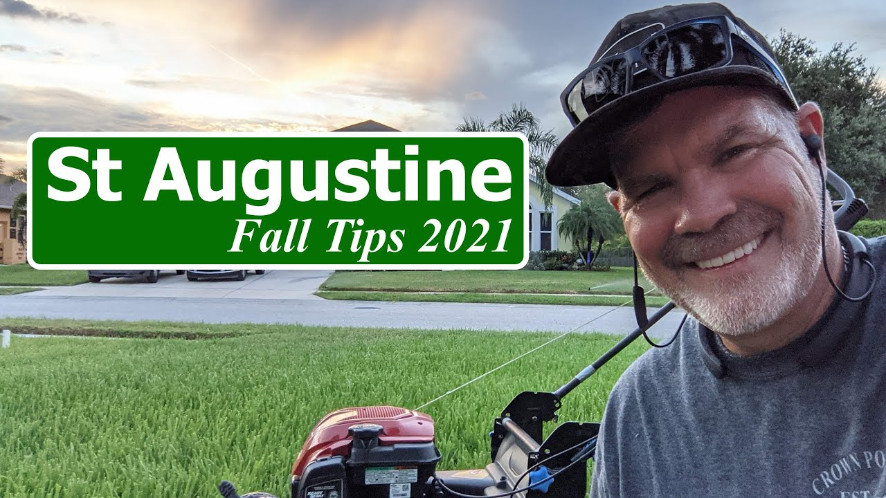 St Augustine Grass Lawn Tips Fall 2021