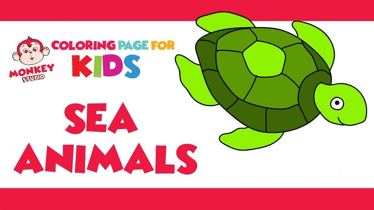 how to draw sea animals coloring page turtle sea horse