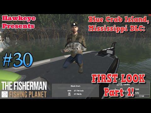 The Fisherman -