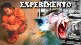 El Cruel Experimento Del Pozo de la Desesperanza -Harry Harlow