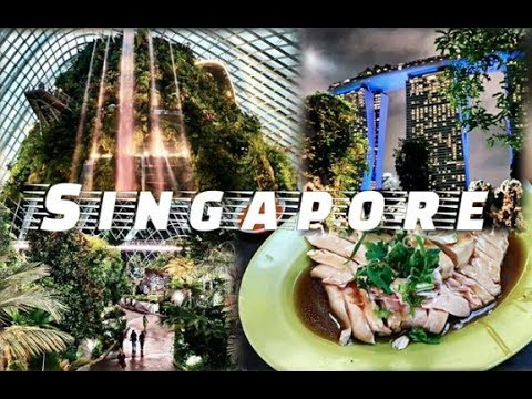 Singapore Vlog 新加坡 - Food Porn, Shopping, Travelling [美食, 购物, 旅行]