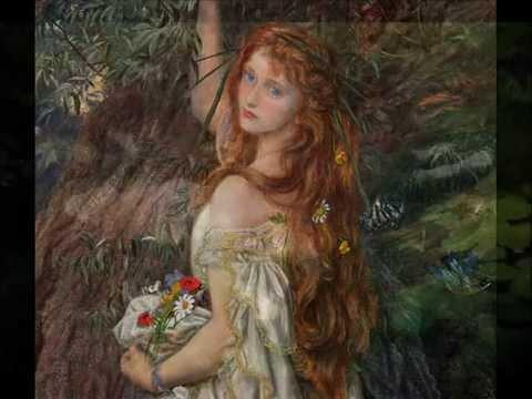 Down In The Willow Garden (with Lyrics) - Tim O'Brien W/ Paul Brady