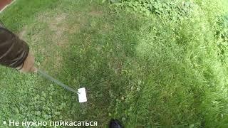 Уборка за собакой во дворе: щетка Дворус