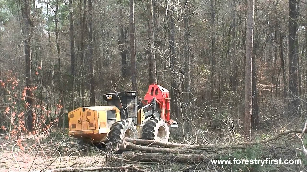 2014 CAT 573C Fellerbuncher with 1900 Hours at Forestry First
