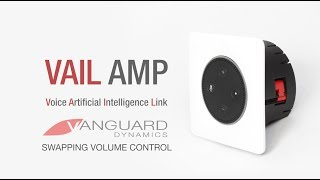 SWAPPING VOLUME CONTROL TO VAIL AMP