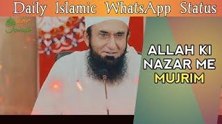 #Tariq_jameel_status   Islamic Whatsapp Status   Hadithofprophet   New Status Video   Islamic Videos
