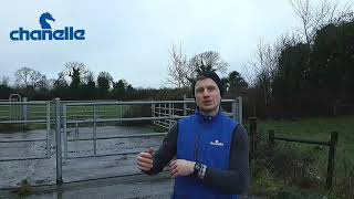 #SixtySecondSolutions - Liver Fluke Control in Outwintered and Housed Sheep
