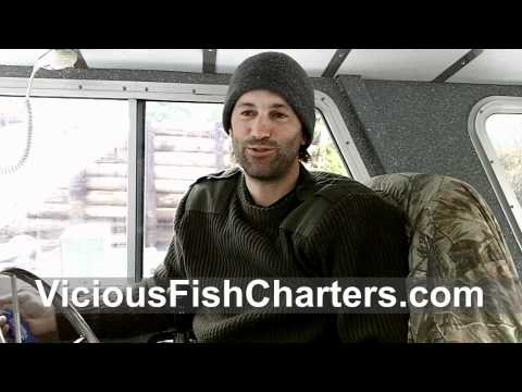 3 minutes with Vicious Fish Charters