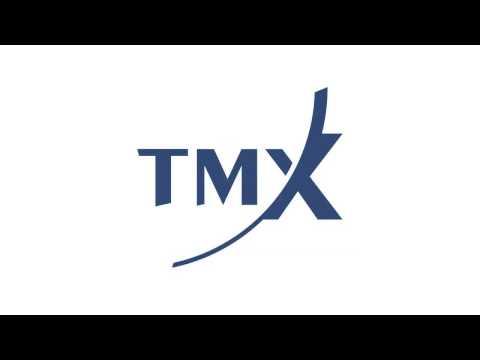 6. Big Data - TMX Trading Conference 2013