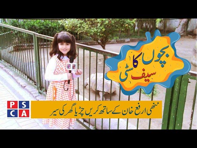 A visit to Zoo with Arfa Khan||PSCA TV||Bachon Ka Safe City EP 3
