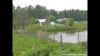 Rzeka Nurzec  okolice Bociek i wsi Chranibory