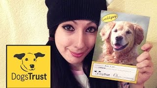 Sponsor A Dog From The Dogs Trust!