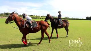 UNNA POLO - An Unique Experience Awaits You(Perhaps you've watched polo from the sidelines, and wondered how you might give it a try. Or maybe you're high-goal standard, keen to sharpen your skills., 2016-02-01T14:57:09.000Z)