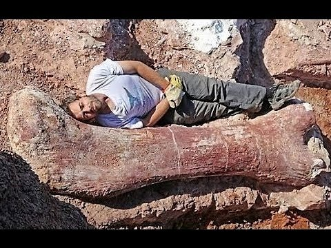BIGGEST Fossil Finds in History