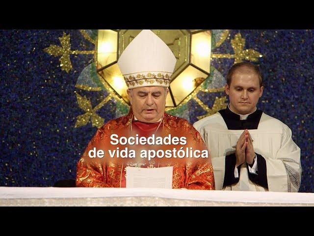 Sociedades de Vida Apostólica