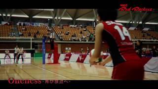 2016/17シーズンNECスポーツサポートソング BUZZ THE BEARS「あなたへ」~NECレッドロケッツPV