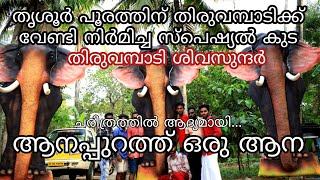 ആനപ്പുറത്ത് ഒരു ആന || തിരുവമ്പാടി ശിവസുന്ദർ || സ്പെഷ്യൽ കുട ||SE MEDIA