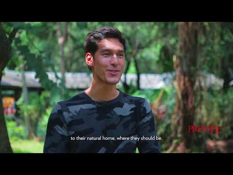 Why Is Richard Kyle On A Freedom Mission With Borneo Orangutan Survival Foundation?