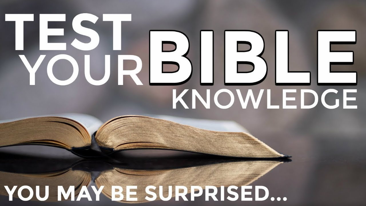 Image result for bible knowledge