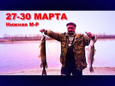 Рыбалка. Трое суток на реке с Леопольдом и Больничкой. Самоизолировались от всех на М-Р. Судак. Щука