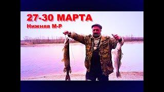 Рыбалка Трое суток на реке с Леопольдом и Больничкой Самоизолировались от всех на М Р Судак Щука